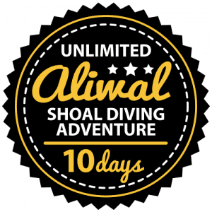 Unlimited Aliwal Shoal Adventure